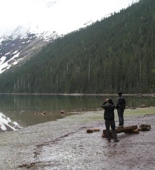 Glacier Scenic View