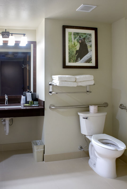 Family Suite Accessible Bathroom