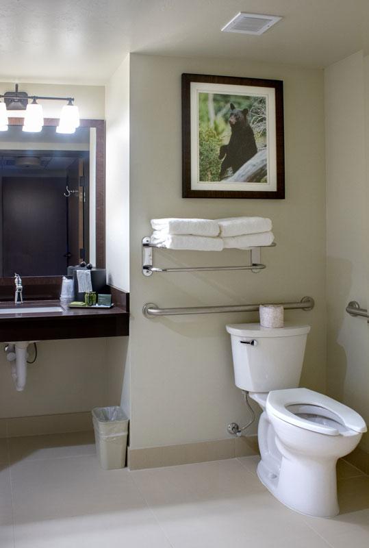 queen-queen-standard-accessible-bathroom-2