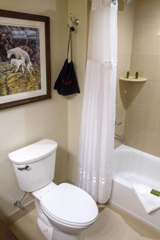 queen-queen-suite-bathroom-2