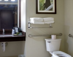queen-queen-suite-accessible-bathroom-2