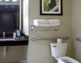 queen-queen-suite-accessible-bathroom-2