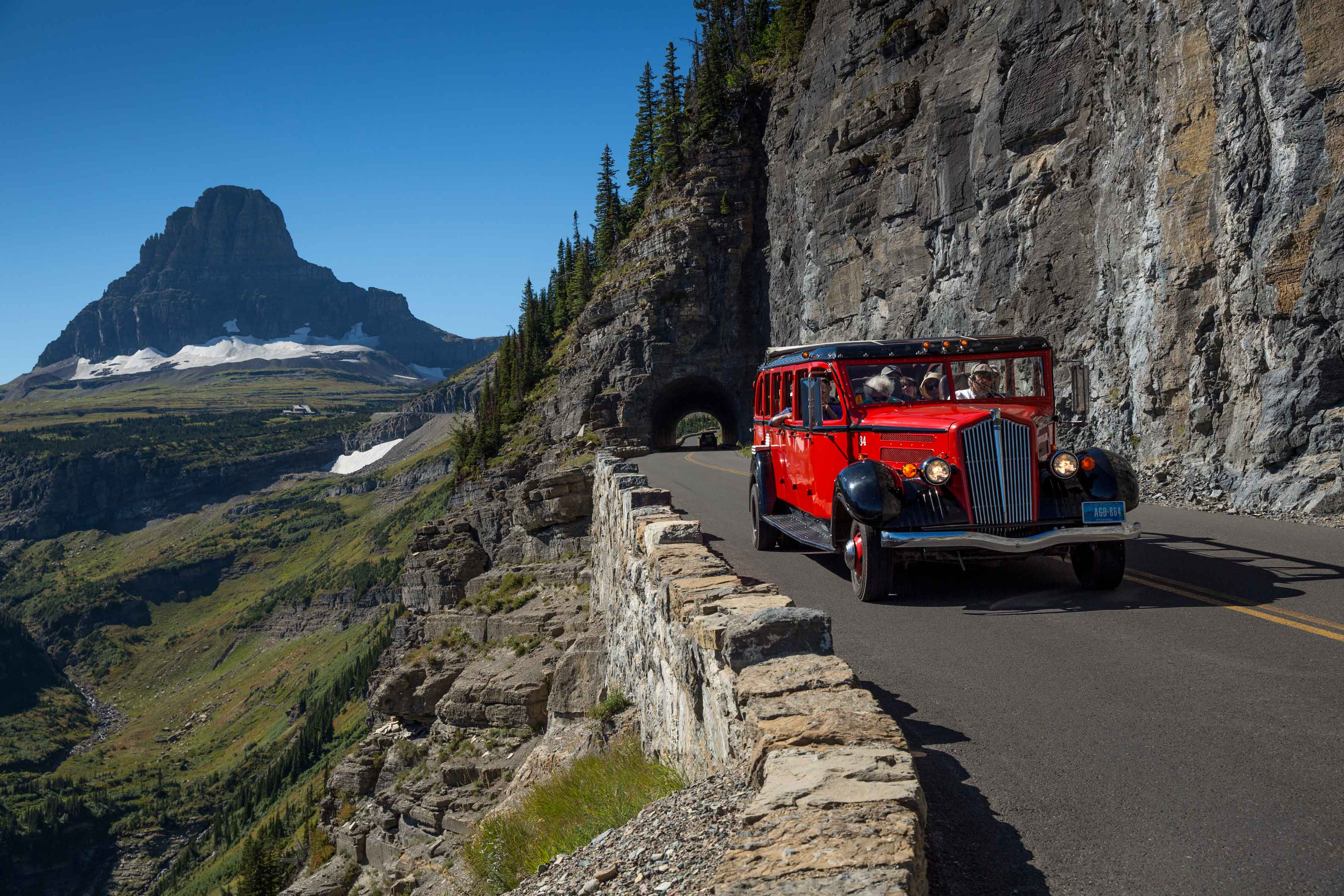 Take a Red Bus Tour